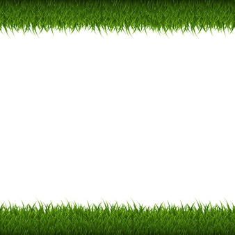 Green grass border isolated,  illustration