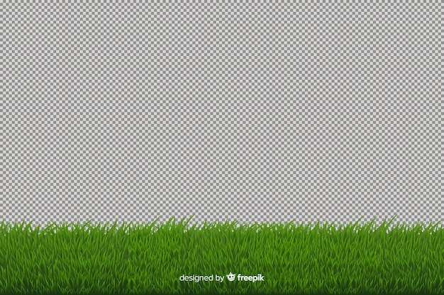 Green grass border realistic style