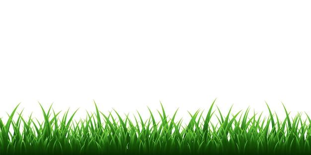 透明な背景に設定された緑の草の境界線。