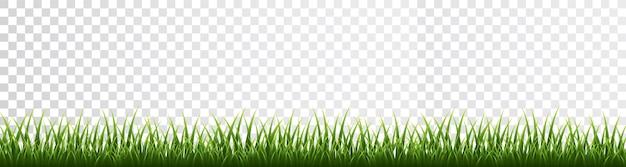 Граница зеленой травы на прозрачном фоне.