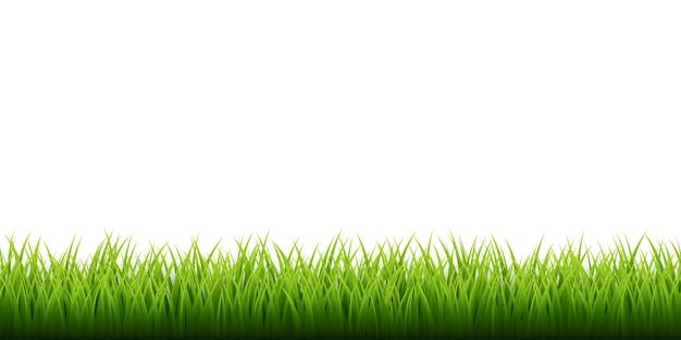 緑の草のボーダーセット Premiumベクター
