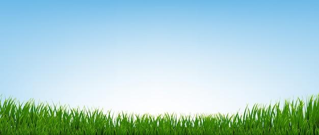 グラデーションメッシュ、イラストで青い背景の緑の草の境界線