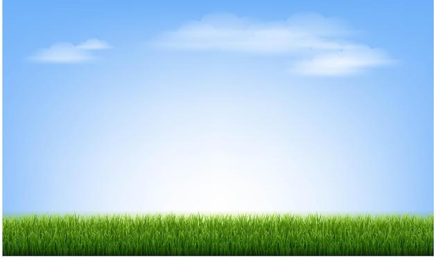 青い空と雲と緑の草の境界線