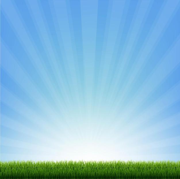Граница зеленой травы с синими солнечными лучами
