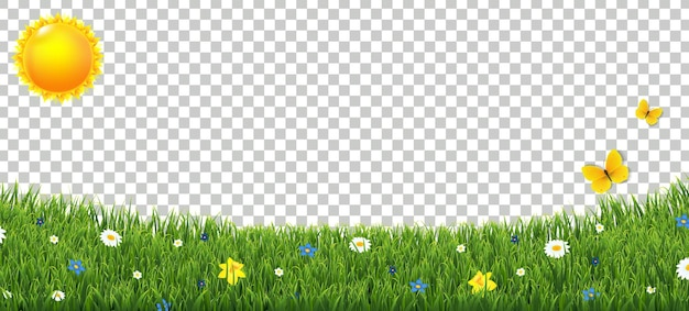 Green grass border with flowers and sun isolated transparent background with gradient mesh,