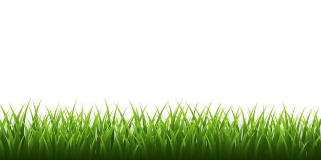 緑の草の境界線