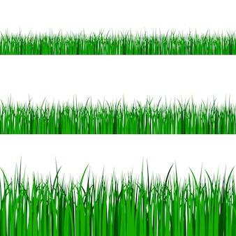 緑の草の境界線が設定されます。春または夏の植物畑の芝生。