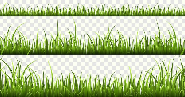 Green grass borders. summer meadow green panorama nature herbs spring elements lawn grass isolated set