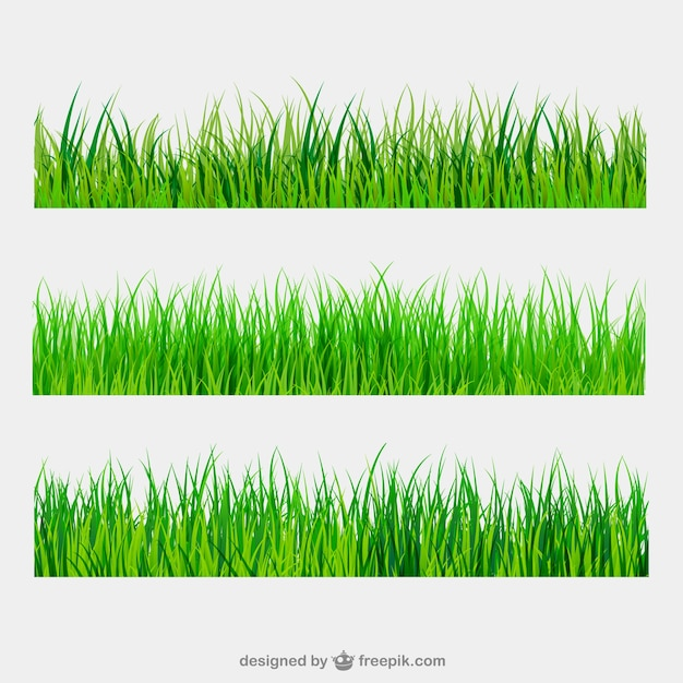 grass vectors photos and psd files free download rh freepik com tall grass free clipart free grass clipart border