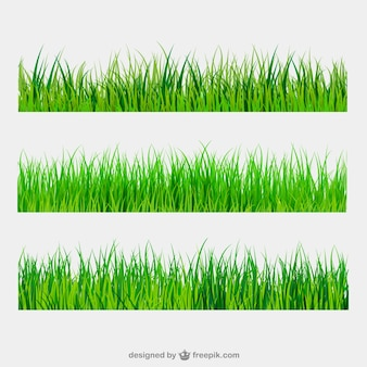 Green grass borders Premium Vector