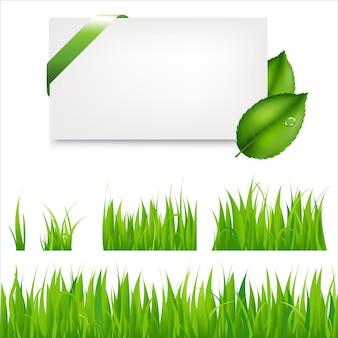 Коллекция зеленой травы и пустой подарочный тег с листьями и зеленой атласной лентой.