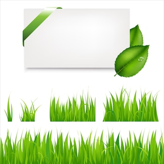 Green grass collection and blank gift tag with leaves and green satin ribbon.