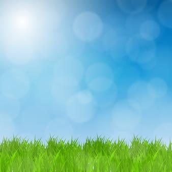 緑の芝生のフィールドと青空の自然の背景