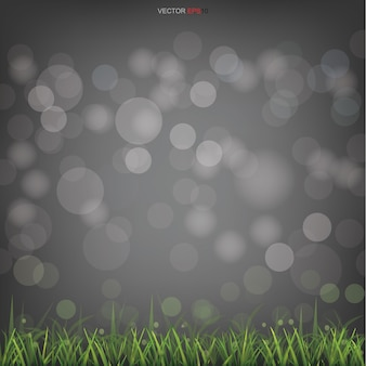 Green grass field with light blurred bokeh background