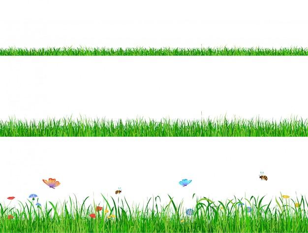 Green grass flowers set