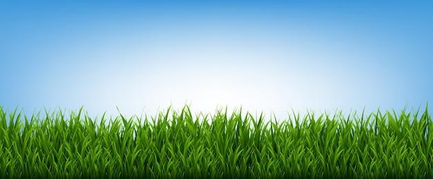 緑の芝生のフレームと青空の背景、ベクトルイラスト