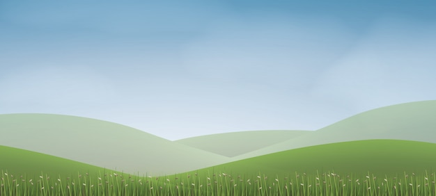 Green grass hill with blue sky.