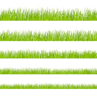 Green grass. landscaped lawns, meadows border clipart. isolated organic pasture or garden objects shapes