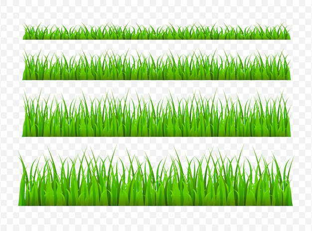 Green grass meadow border  pattern. grass background  illustration
