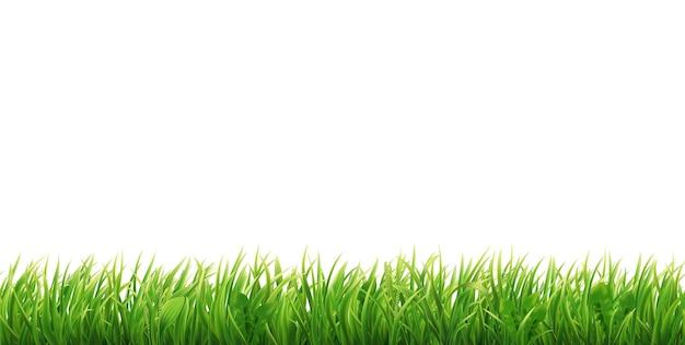 Зеленая трава бесшовная граница реалистичная горизонтальная полевая лужайка или луг иллюстрация