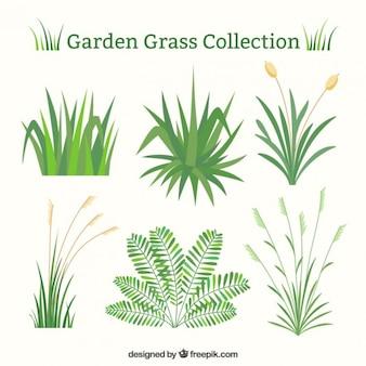 フラットデザインの緑の草のセット
