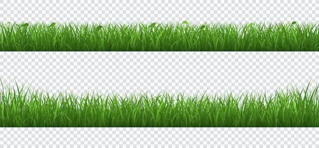 Зеленая трава с растениями границы набора, изолированных на прозрачной