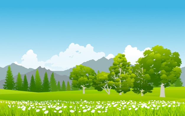Green grassland with flowers at mountain