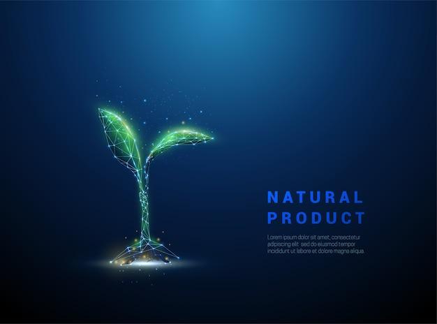 緑の成長する植物の芽。バイオテクノロジーの概念。低ポリスタイルのデザイン。ワイヤーフレーム光接続構造。モダンな孤立した図