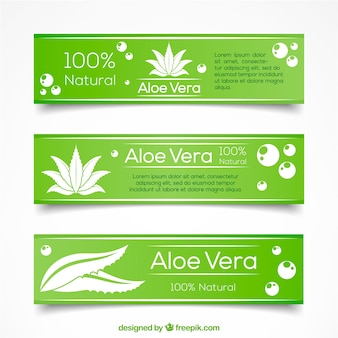 Green hand drawn aloe vera banners