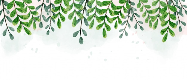 Green hanging leaves background