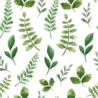 녹색 허브. 봄 꽃 완벽 한 패턴입니다. 손으로 그린 수채화 그림.