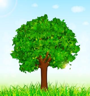 나무와 잔디 배경으로 녹색 풍경