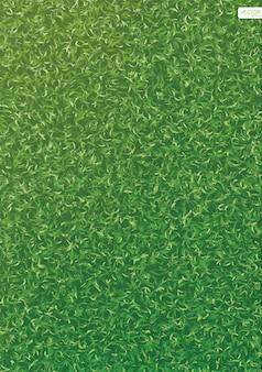 背景の緑の芝生の草のテクスチャ。