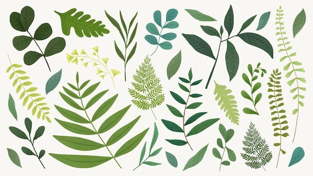베이지색 배경 벡터에 녹색 잎 디자인 요소 설정
