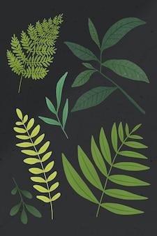 灰色の背景に設定されている緑の葉のデザイン要素