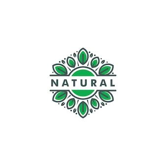 Green leaf eco logo template vector illustration