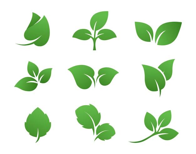 Зеленый лист логотип набор дизайн