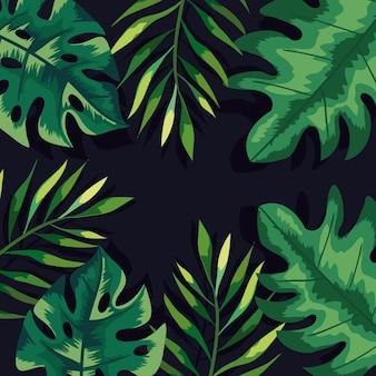 緑の葉と枝の背景