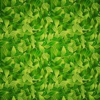 緑の葉の背景、ベクトルイラスト