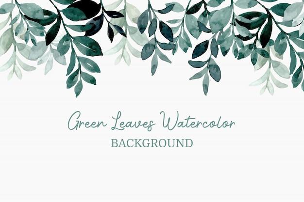 緑の葉の水彩画の背景