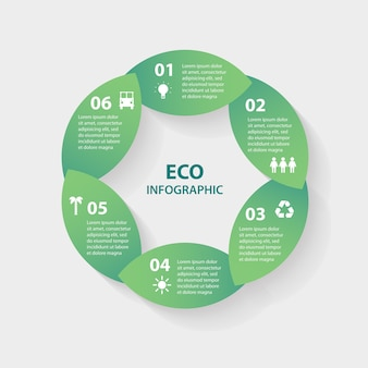 Green leaves circle round sign infographic
