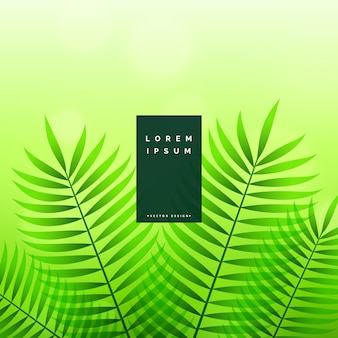Green leaves eco nature background