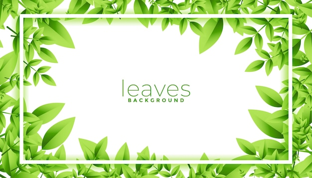 Green leaves frame with text space design