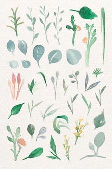 Зеленые листья в акварели