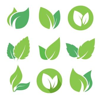 친환경 천연 제품을 위한 녹색 잎 로고 세트