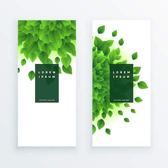 Green leaves vertical banner background