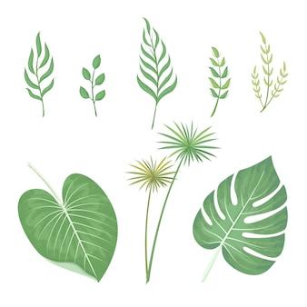 緑の葉水彩セット