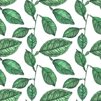 Green lemon leaves seamless pattern