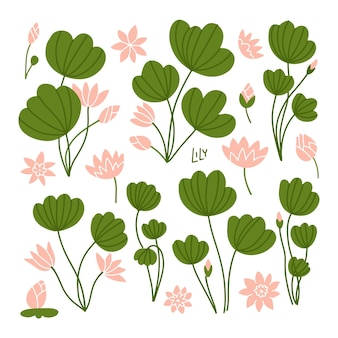 Green lily pads with lotus flowers side view pink flowering water lilies