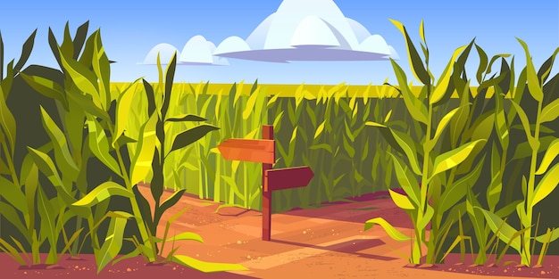 Piante di mais verde e strada sabbiosa tra campi di mais, palo di legno con frecce e segnali stradali. paesaggio agricolo dell'azienda agricola, illustrazione del fumetto di scena naturale.